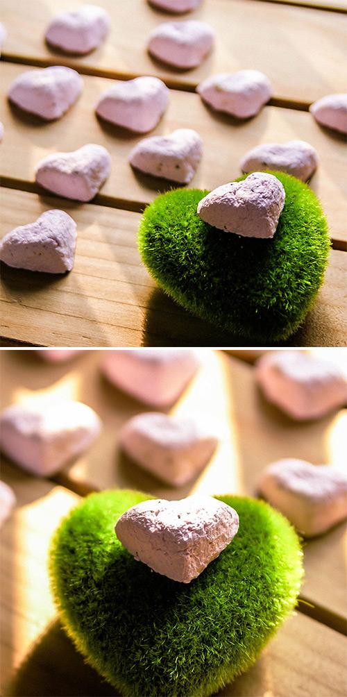 WOOPAPERS Love Grows 愛心種子球植栽組 粉紅