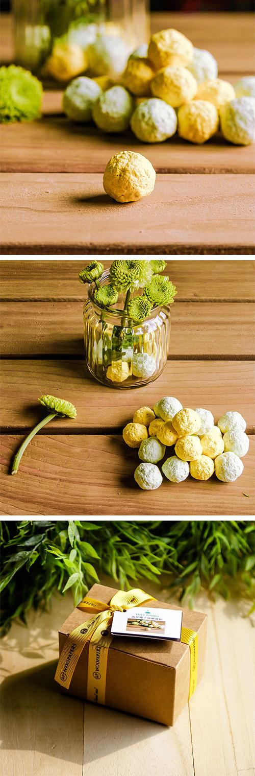 WOOPAPERS Herbs 香草種子球植栽組