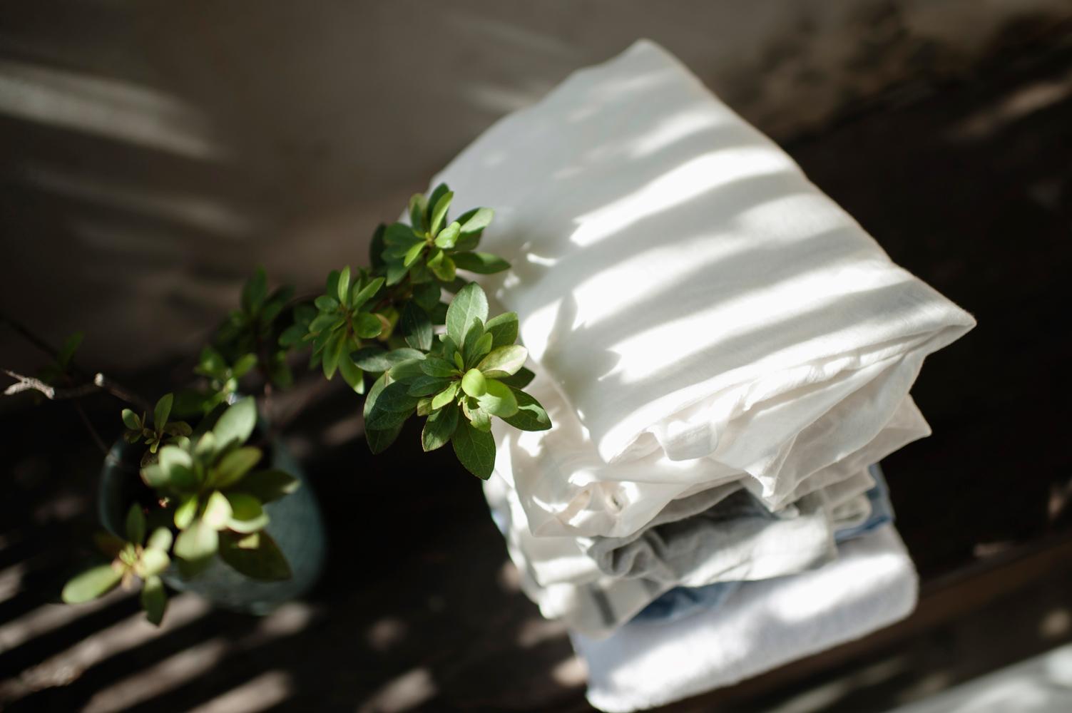 茶籽堂- 天竺葵洗衣素