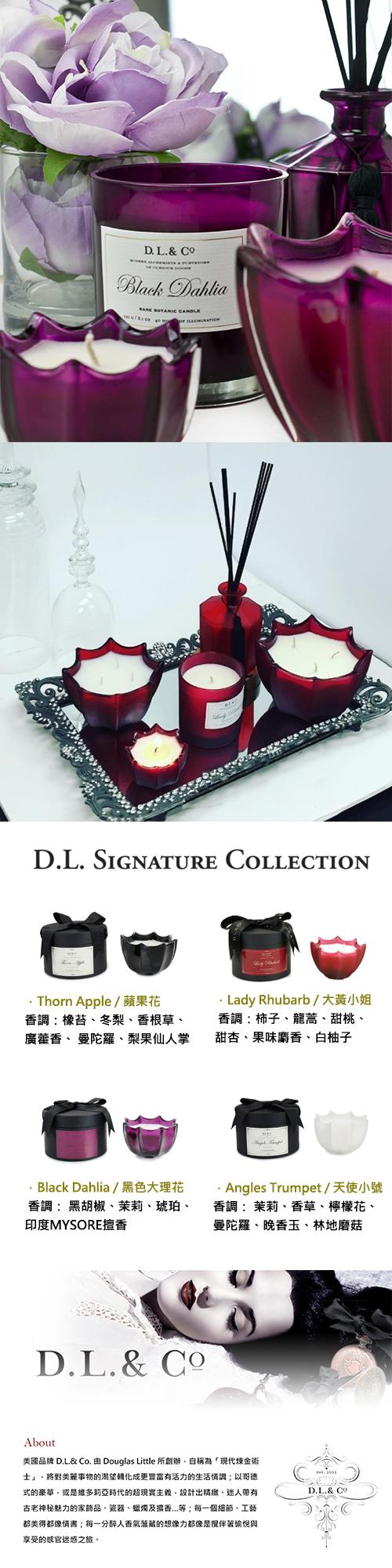 D.L.&Co 經典系列貝殼杯蠟 天使小號