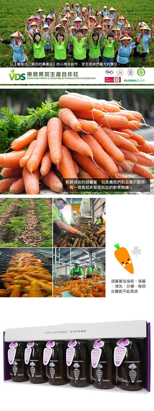 VDS 100%紫胡蘿蔔綜合蔬果汁禮盒