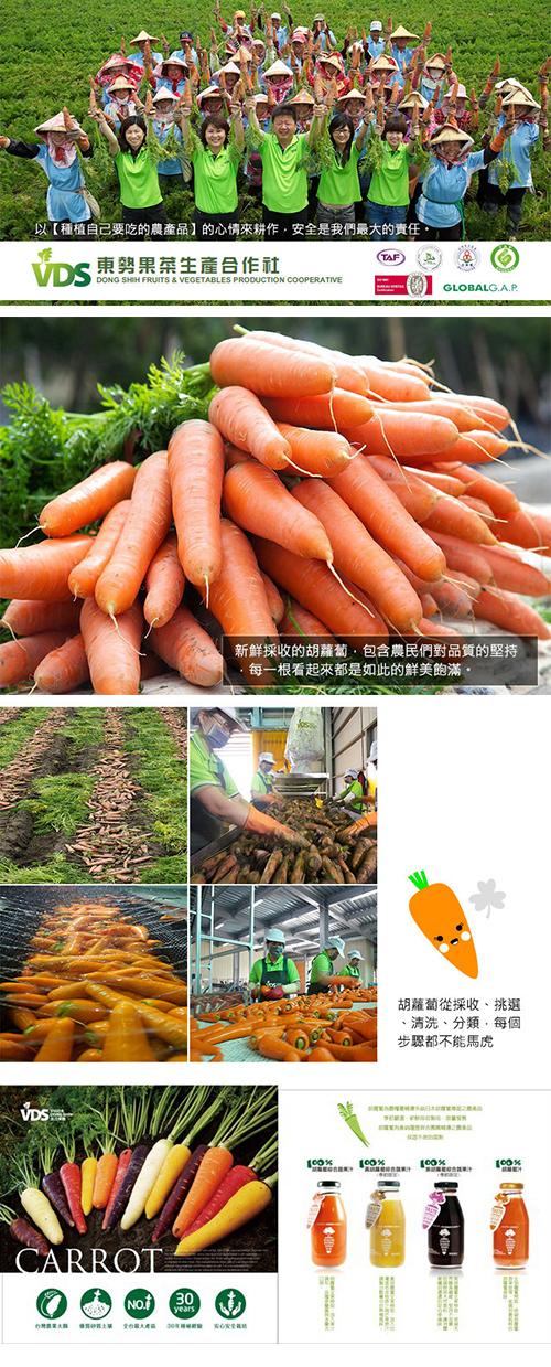 VDS 胡蘿蔔汁活力舞彩禮盒
