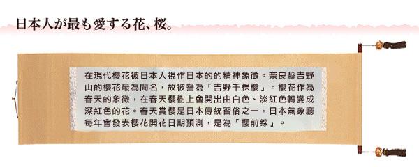 賽先生科學工廠 魔法櫻花 10cm(自)