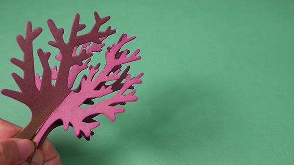 1 ‧ 將樹幹組裝起來放置於底盤的十字凹痕上。