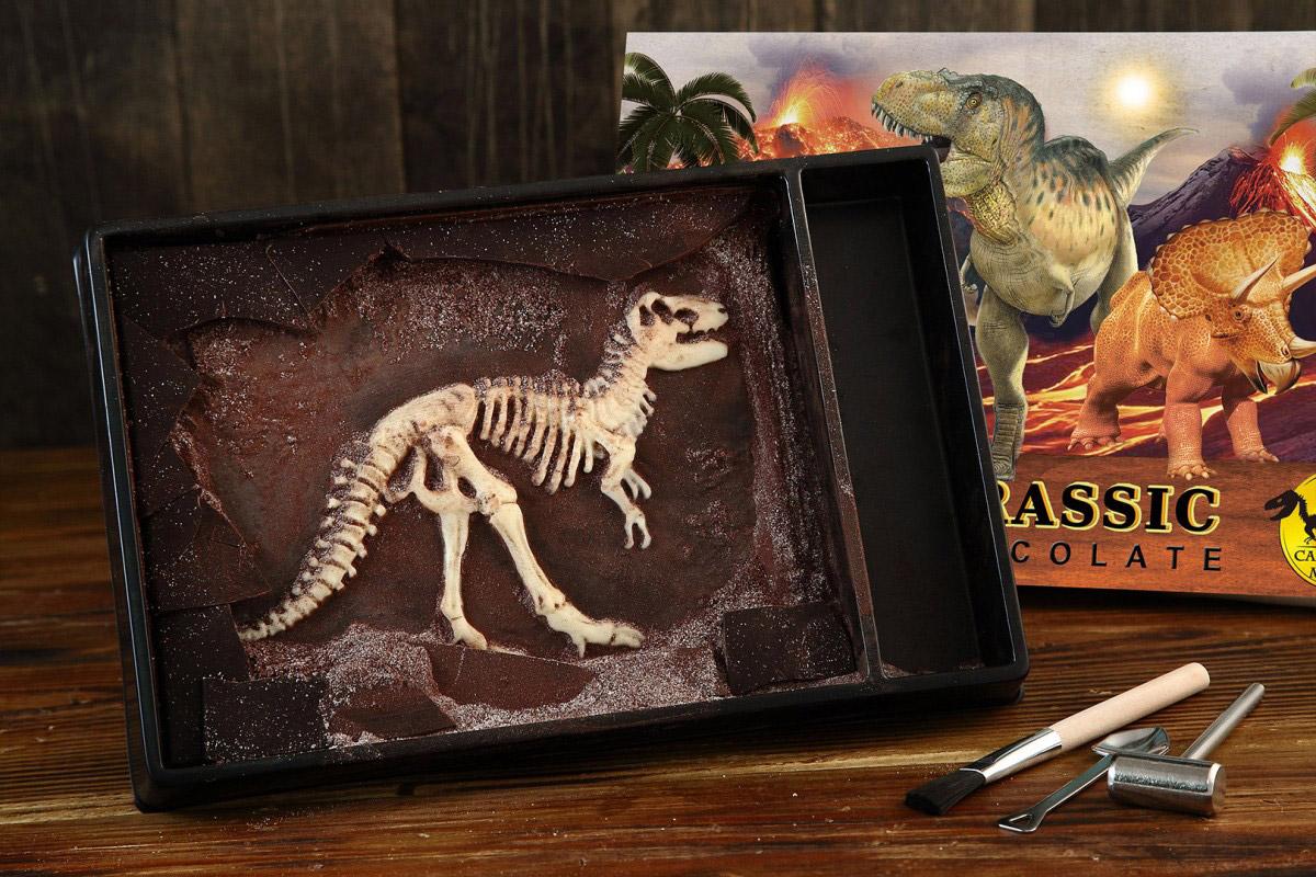 木匠手作 【歡樂隨享版】 恐龍化石巧克力 霸王龍