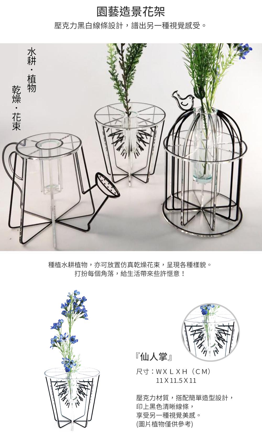 GreenPandora 園藝造景花架(不含植物)(仙人掌)