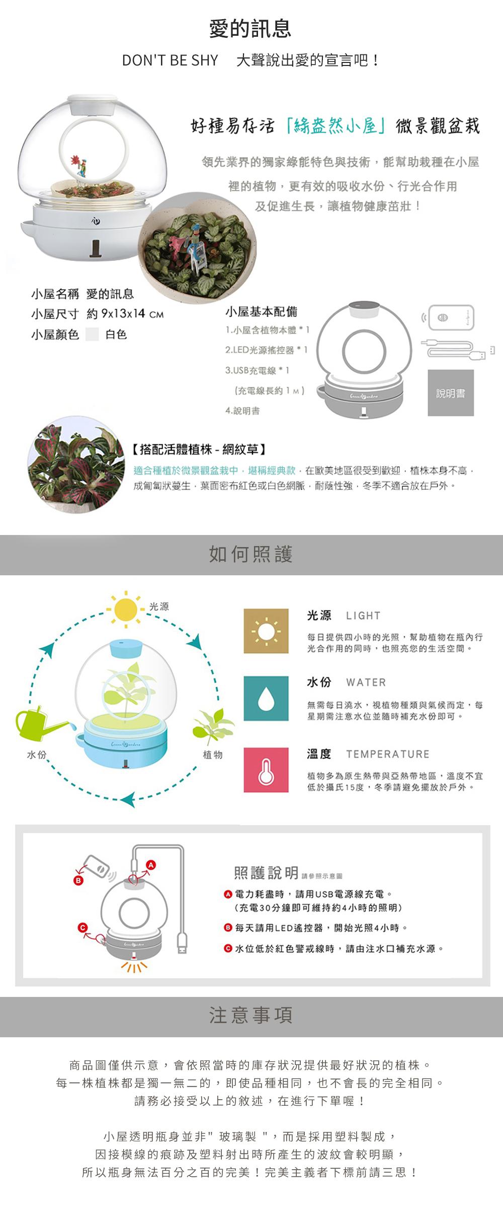GreenPandora 愛的訊息 療癒盆栽(白色)