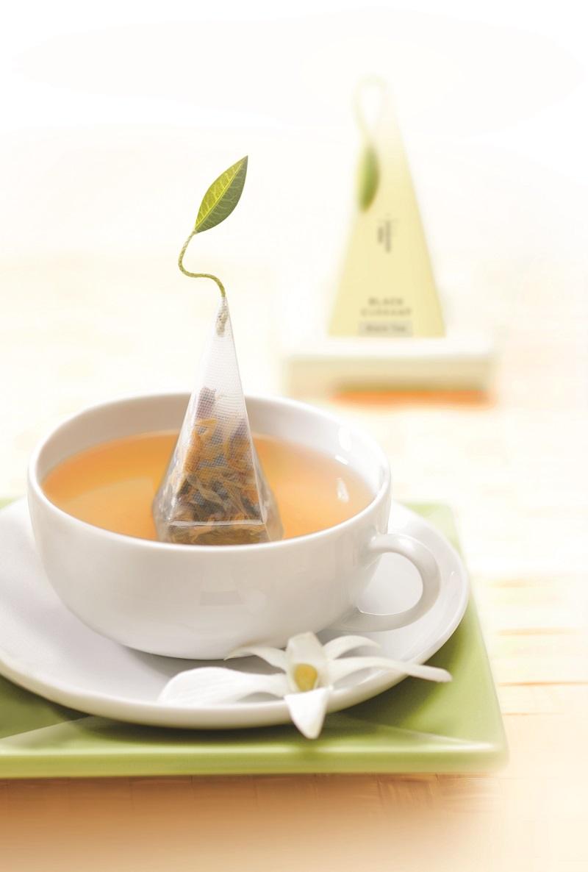 Tea Forte 48入金字塔型絲質茶包 - 白薑梨花茶