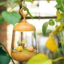創意設計小物館 LED音樂小夜燈 木紋款 生日快樂