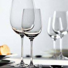 德國 Nachtmann 美食家 Gourmet2000 紅酒杯 2入組
