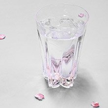 <span class=cutoff>日本 Perrocaliente SAKURASAKU 櫻花杯 雙入同款不同色 ...</span>