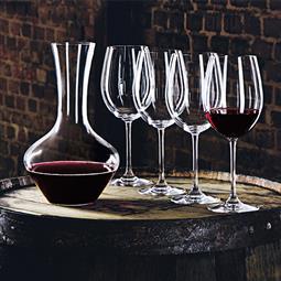 德國 Nachtmann 維芳迪 Vivendi 醒酒器+紅酒杯 5件組