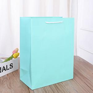 氣質蒂芬尼素面禮物提袋